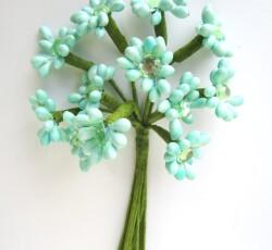 fiorellini acqua 0058