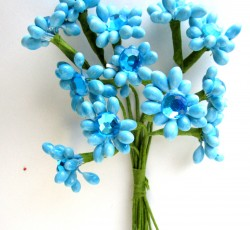 fiorellini azzurri 0061