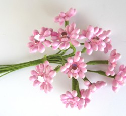 fiorellini rosa 0060