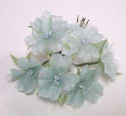 fiori azzurri 0147